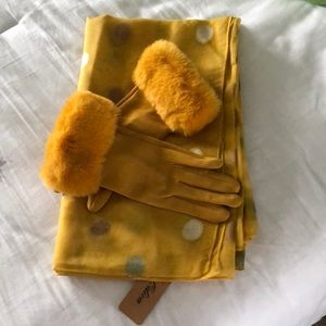 Beautiful gloves and scarf
